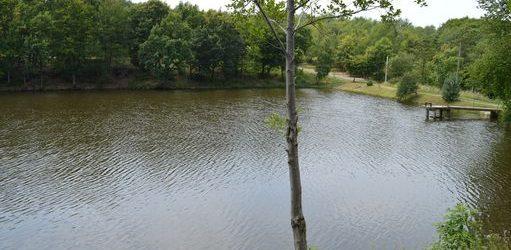 У озері на Виноградівщині потонув літній чоловік