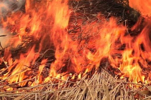 Під час пожежі на Мукачівщині згоріло 15 т сіна