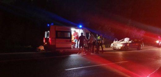 На Мукачівщині автомобіль врізався в коня (ФОТО)