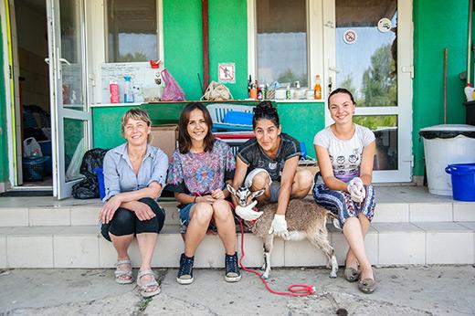 """У мережі презентували короткометражний фільм про """"Барбос"""" – притулок для тварин в Ужгороді"""