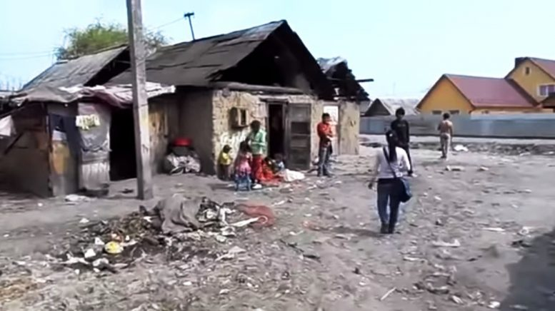 Через бездіяльність поліції Закарпаття Берегівчани просять Президента Зеленського захисту від злочинів ромів (відео)