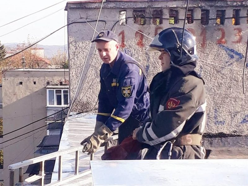 У Сваляві рятувальники допомогли кішці, яка другу добу не могла злізти з даху