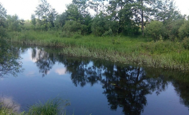 На Ужгородщині у річці виявили тіло чоловіка