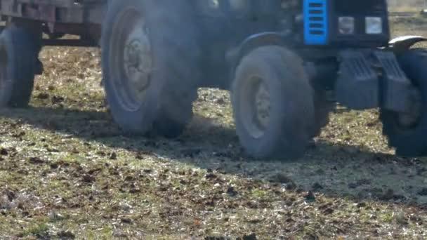 На Берегівщині під час роботи на полі чоловік загинув під колесами свого трактора