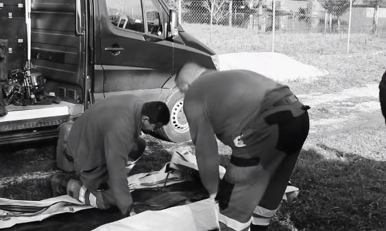 В Словаччині знайшли тіла двох жінок, які втопилися, рятуючи звірів (відео)