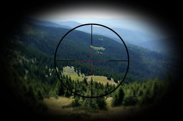 Зона природоохоронних порушень: приховані загрози найбільшого заповідника України (ВІДЕО)