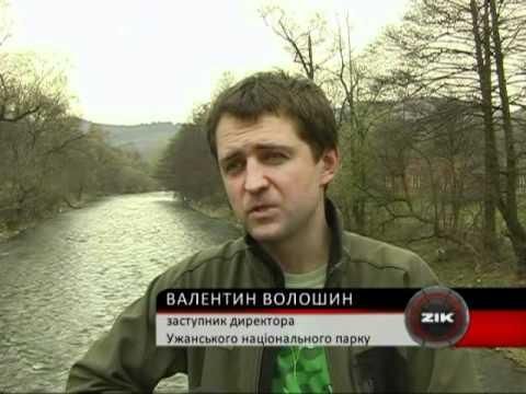 В Ужанському нацпарку розповіли про корупційний підряд екозахисника Валентина Волошина