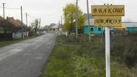 Повернувшись з роботи, мешканець Берегівщини знайшов удома дружину вбитою