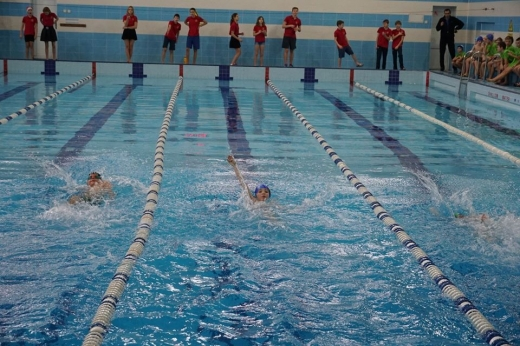 В Ужгороді змагалися 130 юних плавців