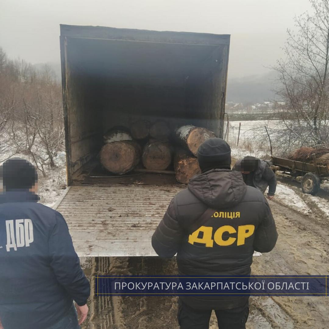 Правоохоронці викрили на Хустщині лісника, який вимагав 3000 $ за надання дозволу на вирубку