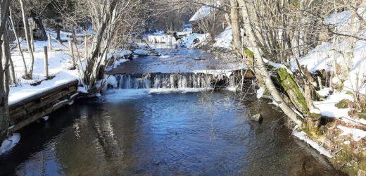 Зимові принади Ужанського національного парку (відео, фото)