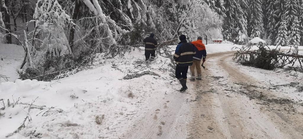 Закарпатські рятувальники продовжують ліквідовувати наслідки негоди