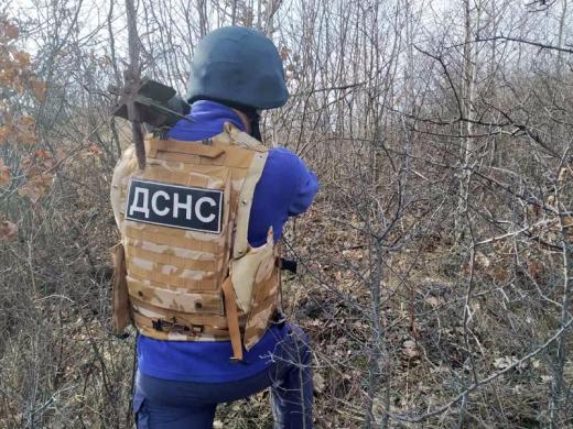 У лісі на Ужгородщині виявили небезпечні знахідки часів війни