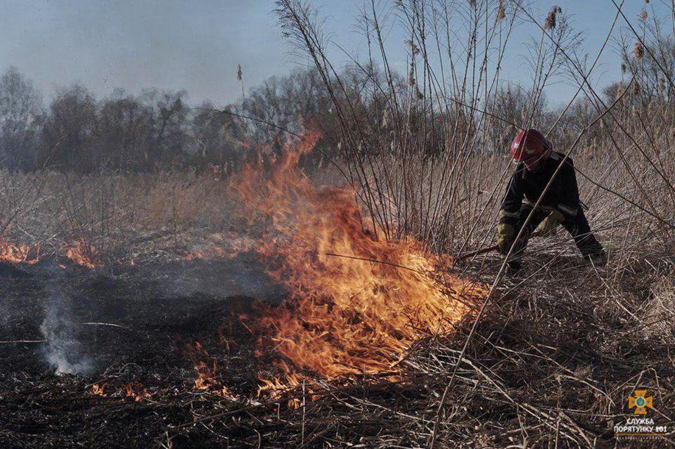 Закарпатці, всупереч усім заборонам і попередженням, продовжують спалювати суху траву та чагарники