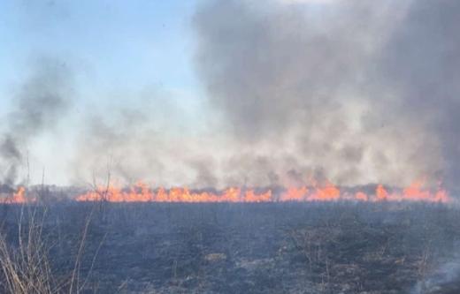 Через спалювання сухої трави ледь не загорілися будинки на Виноградівщині