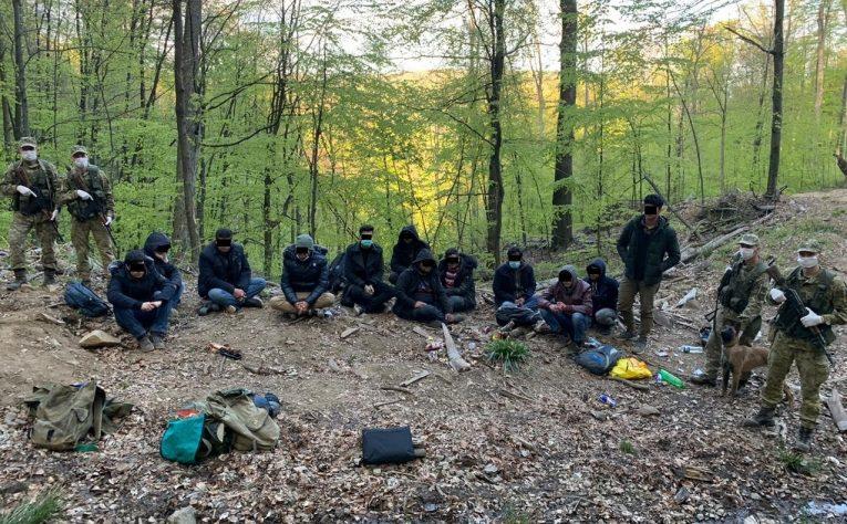 Прикордонники Чопського загону затримали у лісі 12 нелегалів