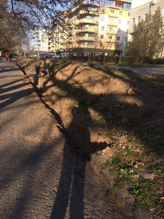 """Влада Ужгорода, використовуючи для прикриття емідемію коронавірусу, нищить дерева та міняє """"вічні"""" кам'яні бордюри (фото)"""