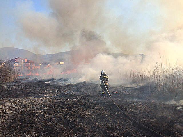 За добу закарпатські рятувальники ліквідували два десятки пожеж в екосистемах
