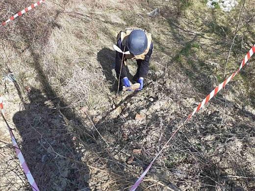 Піротехніки вилучили і знищили міни, знайдені мешканцями Ужгородщини та Берегова