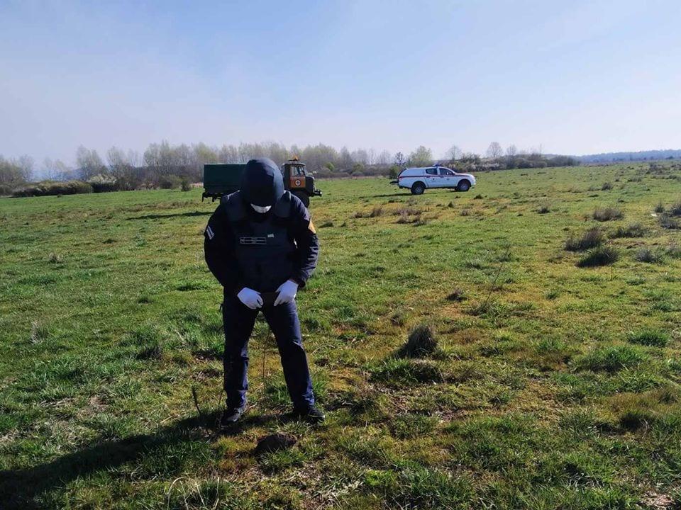 Випасаючи худобу, мешканець Ужгородщини знайшов мінометну міну часів ІІ світової