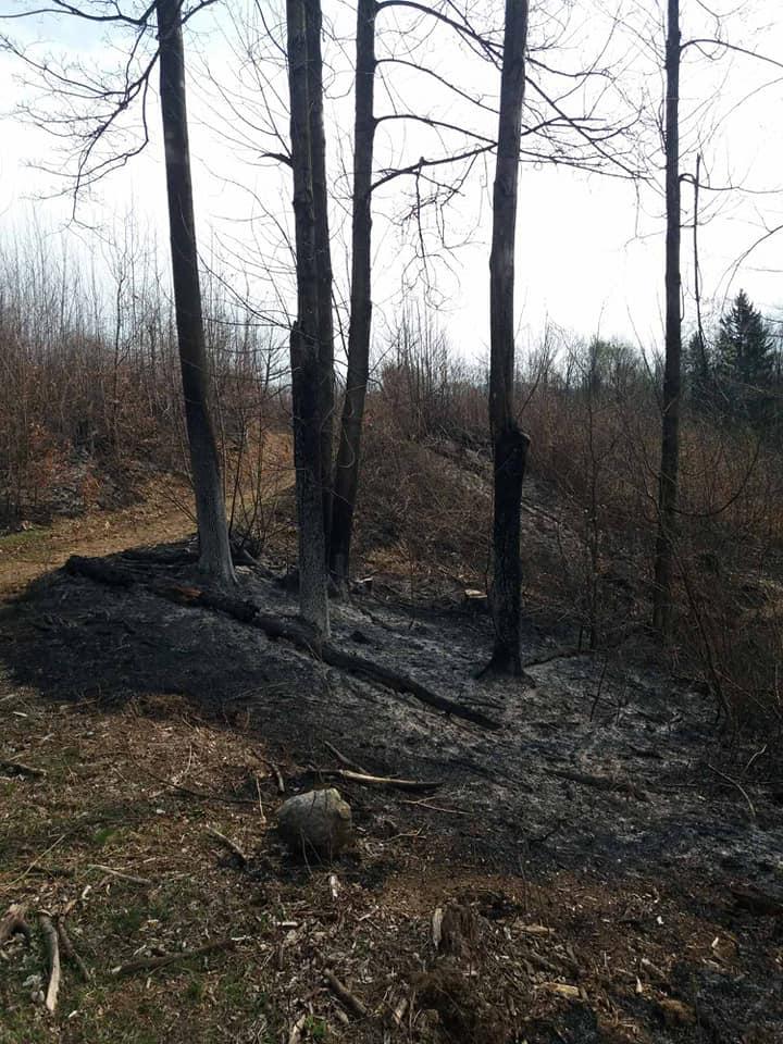 "Понад 50 людей гасили пожежу у нацпарку ""Зачарований край"" на Закарпатті"