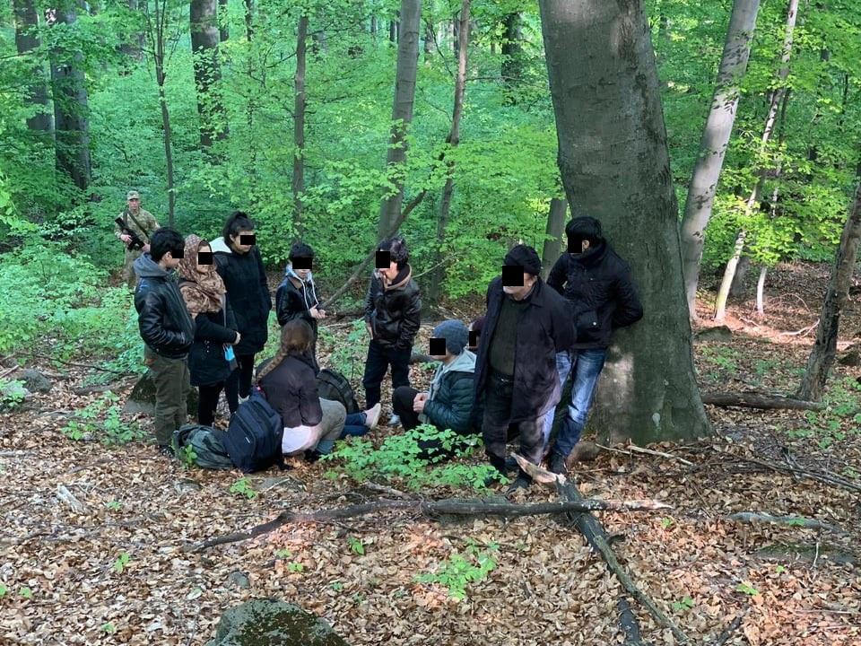 Прикордонники затримали на Ужгородщині 11 нелегалів з Афганістану та їх провідника