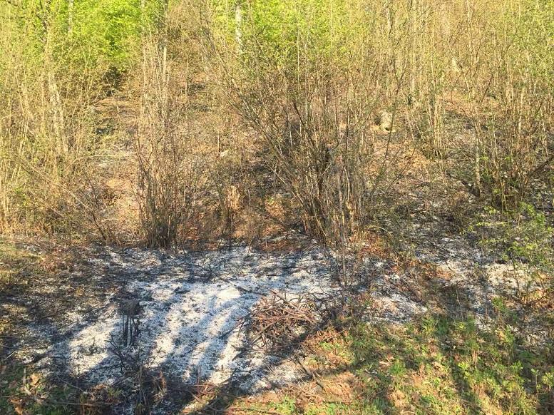 Спалювання сухої трави призвело до загибелі жінки з Тячівщини та травмування її сина