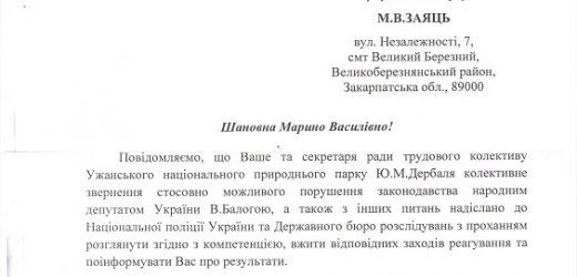 """Ужанський нацпарк спростував інформацію про незаконні рубки, вказують на """"замовлення"""" Балоги (документ)"""