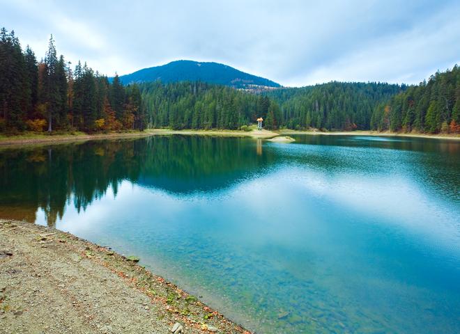 На Закарпатті знову доступні для відвідувачів озеро Синевир та реабілітаційний центр бурих ведмедів
