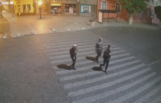 Уночі в центрі Ужгорода троє вандалів вирвали декоративне дерево та зняли кришку люка (ВІДЕО)
