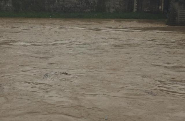 В Ужгороді підліток впав у річку і ледве не потонув