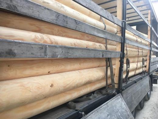 Оперативні співробітники Мукачівського прикордонного загону встановили організатора незаконного вивезення за кордон деревини