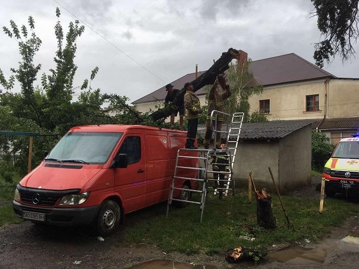 Під час бурі в Ужгороді дерево впало на мікроавтобус