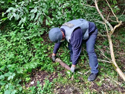 Закарпатець під час збирання грибів знайшов у лісі вибухонебезпечний предмет