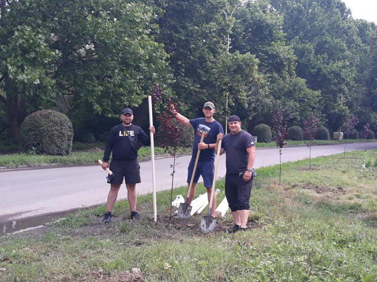 Захисники природи садять дерева на набережній в Ужгороді, яку влада систематично нищить (фото)