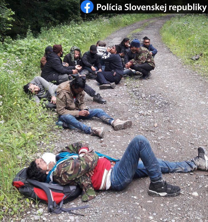 Словацька поліція затримала 16 нелегалів, які прийшли зі сторони Закарпаття (фото)