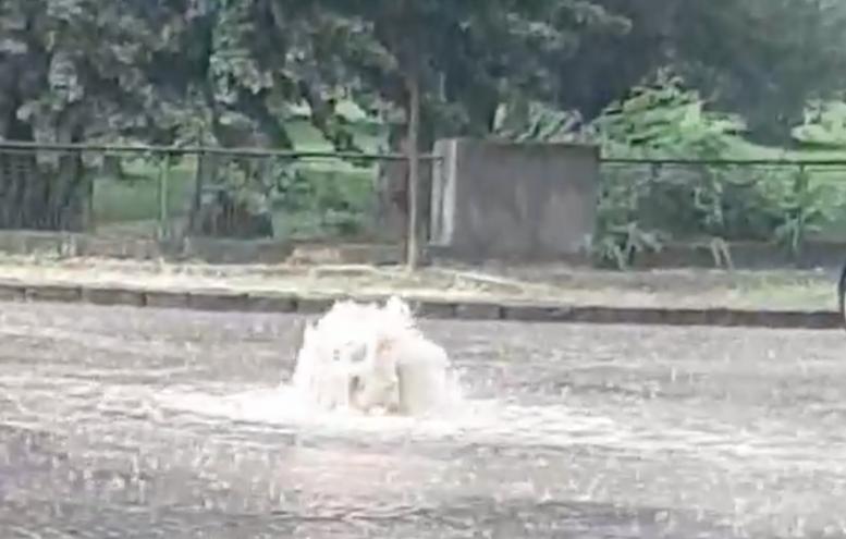 В Ужгороді на вулиці Гойди виник новий фонтан (відео)