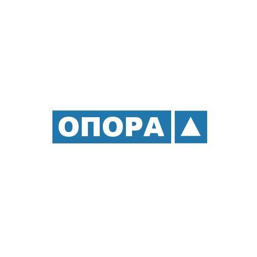 На дільниці в Ужгороді хотіли перебувати двоє спостерігачів від одного кандидата