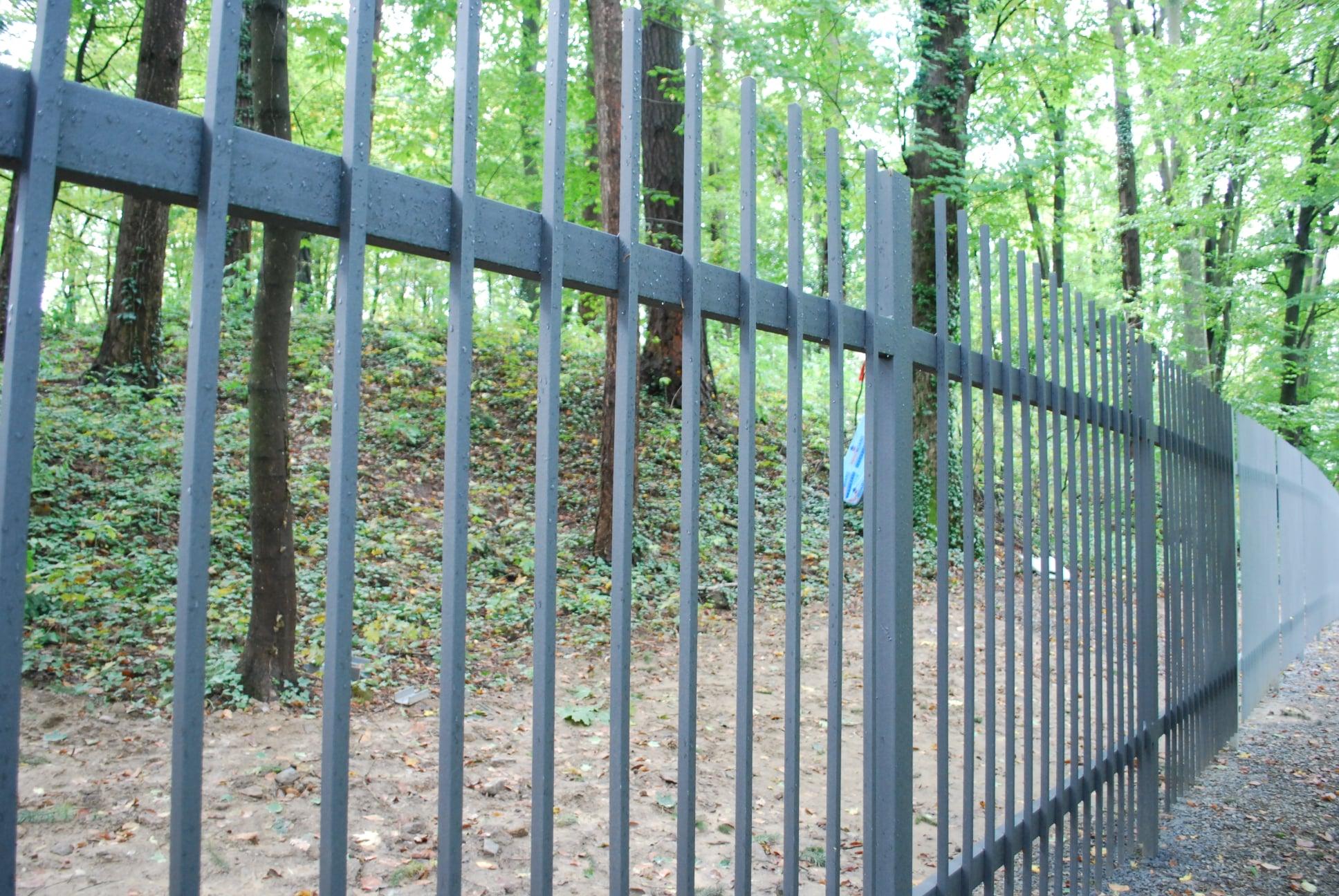 На Закарпатті приватна фірма встановила огорожу перед Невицьким замком (ВІДЕО)