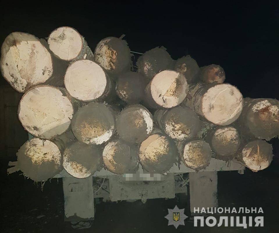 На Рахівщині поліцейські зупинили вантажівку з нелегальною деревиною