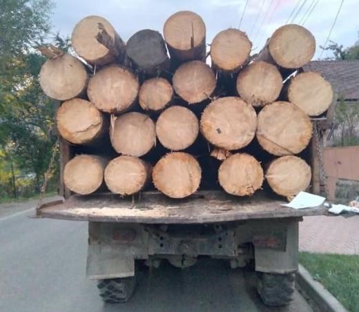 Поліція зупинила у Рахові вантажівку, в якій перевозили деревину за підробленими документами