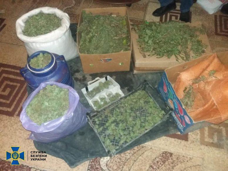 На Закарпатті СБУ блокувала діяльність групи наркоторговців