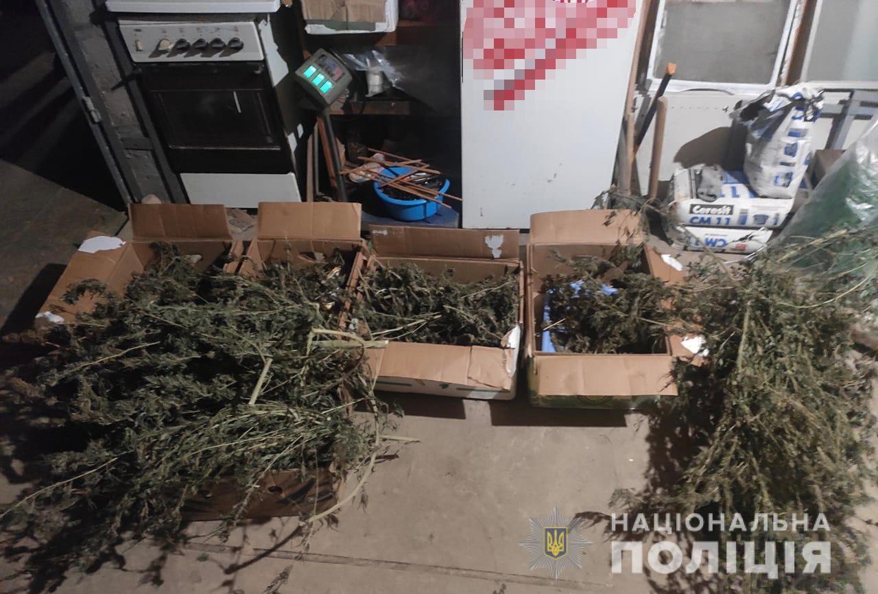 Під час обшуку у мешканця Мукачівщини знайшли більше 2 кг коноплі