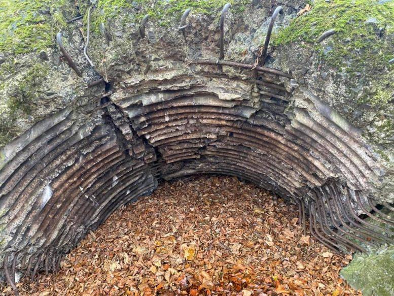 Як виглядає восени Лінія Арпада на території Ужанського нацпарку (фото)
