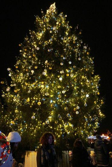 В Ужгороді засвітили вогні новорічної ялинки