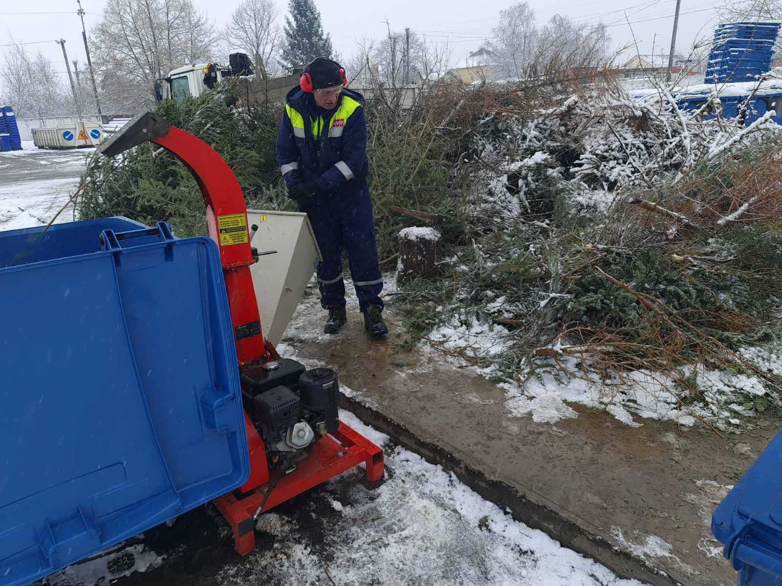 Ужгородців просять складати ялинки біля сміттєвих майданчиків