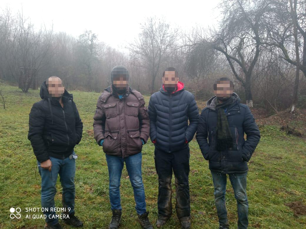 Закарпатські прикордонники за 100 метрів від загороджувального паркану впіймали чотирьох нелегальних мігрантів