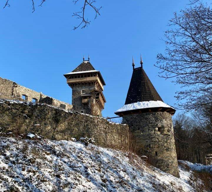 В Закарпатській облраді обговорили проблемний підхід до Невицького замку