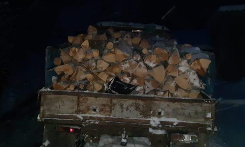 Служба охорони Ужанського нацпарку затримала вантажівку краденої деревини (фото)