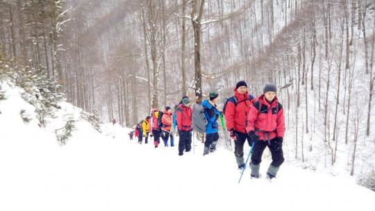 На Закарпатті 4-й день шукають заблукалого лижника